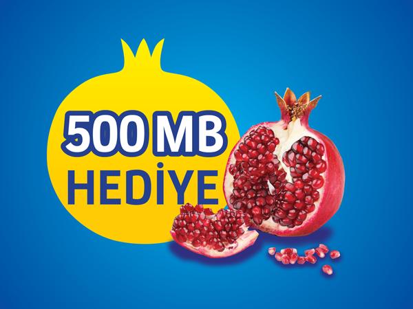 500MB Nar